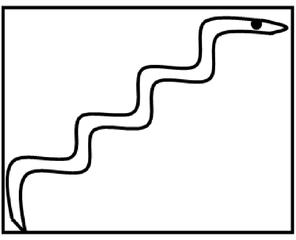 Droodle #7  Schlange kriecht eine Treppe hinauf - Drudel, Droodle, Zeichnung, Bildgeschichte, Rätsel, Rätselbild, Schreibanlass, Gesprächsanlass, Fantasie