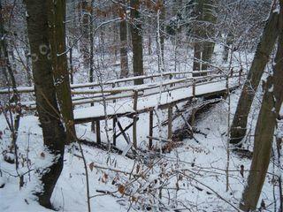 Verschneite Brücke - Brücke, Holzbrücke, verschneit, Winter, Weg, Waldweg