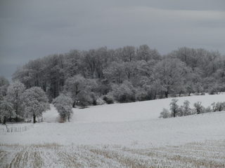 Winterlandschaft - Schnee, Winter, Schneelandschaft, Schneefeld, verschneit, Stille, Wetter