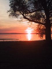 Abendstimmung am Bodensee  - See, Ufer, Baum, Sonnenuntergang, Rot, friedlich, nachdenklich, Stimmung, Meditation, Schreibanlass, Abendrot