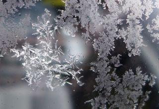 Eiskristall - Eisblumen, Eisblume, Eiskristall, Eisstern, Wetter, Winter, Jahreszeiten, kalt, Eis, Schneestern, gefrieren, Reif, Kristall, Winter, Impression, Raureif, Niederschlag, Resublimation, nadelförmig, Eisnadeln, Wetter, Niederschlag, Physik, erstarren