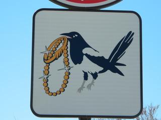 Schild diebische Elster - Schild, Elster, Schmuck, Kette, stehlen, klauen, Vogel, Strand