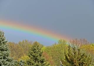 Regenbogen im Frühling - Regenbogen, Spektralfarben, Spiegelung, Wetterphänomen, Regen, Sonne, Kreisbogen, Farbe, Optik, Brechung, Lichtbrechung, Reflexion, Wetter, Farbzerlegung, Wettererscheinung, Physik