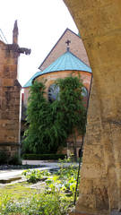 Hildesheimer Dom #09 - Tausendjähriger Rosenstock - Hildesheim, Dom, Domhof, Rose, Rosenstock, tausendjährig, Rosenwunder, Legende