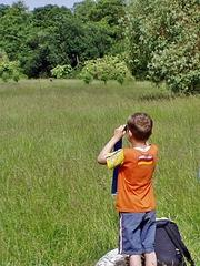 Naturbeobachtung#1 - sehen, beobachten, schauen, Natur, Naturbeobachtung, Sachunterricht, Forscher, forschen, erforschen, Kind, klein, neugierig, wissbegierig, Wissenserwerb