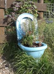 Öffentliche Toilette - Toilette, Klo, Blumentopf, witzig, kurios, Bepflanzung, Deko