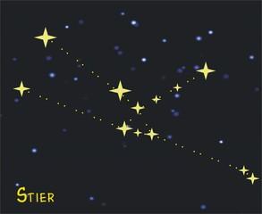 Sternbild Stier (Taurus) – Tierkreiszeichen Stier: - Astronomie, Astrologie, Himmel, Sterne, Sternzeichen, Tierkreiszeichen, Nacht, Sternbilder, Stier.