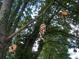 Fantasiegestalten im Baum #2 - Objektkunst, Baum, Fantasiegestalten, Korken, Holz