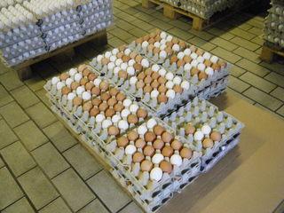 Hüherhof #3 - Hühnerhof, Eier, Verpackung, zwanzig, Güteklasse, Lagerung, Mathematik, Einmaleins