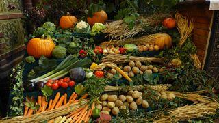 Früchte zum Erntedankfest #1 - Herbst, Erntedank, Erntedankfest, Erntekrone, Altar, Altarraum, Kircheninnenraum, Kürbis, Gemüse, Früchte, Brauchtum