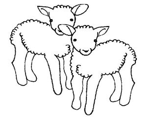 zwei Lämmer - Schaf, Schafe, Lamm, Lämmchen, Osterlamm, Frühjahr, klein, Nutztier, Wolle, Säugetier, Haustier, Vierbeiner, Ostern, Illustration, gestalten, jung, Jungtier, Plural, zwei, Jungtiere, Tiere