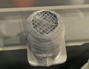 Druckerzeugnis aus einem 3D Drucker#4 - 3D Drucker, Druckerzeugnis, Kunstoff, Verstrebung, Kopf