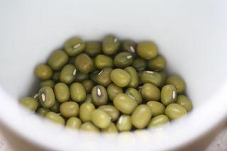 Mungbohnen-Samen - Mungbohnen, Saat, Samen, Sprossen, Makro, Makroaufnahme, Mungobohne, Jerusalembohne, Lunjabohne, Hülsenfrucht