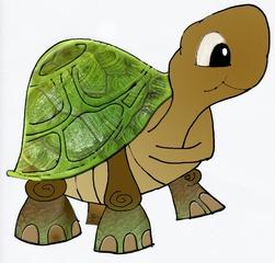 Schildkröte - Schildkröte, Reptil, Panzer, Tier, Turtle, Tortoise, Schuppen