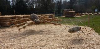 Skulptur aus Stroh#5 - Skulptur, Stroh, Strohskulptur, Kunst, Kunstwerk, Spinne, Netz, Spinnennetz, Beute, Nahrung