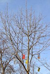 Osterhasenbaum - Ostern, Osterhase, österlich, Hase, Vorlage, Frühling, Fest, Schmuck, schmücken, Baum, Dekoration Hase, Feiertage