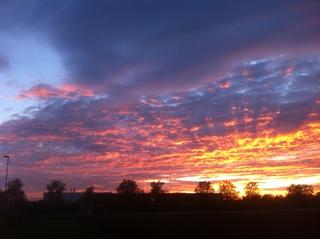 Sonnenuntergang im Hanauerland - Sonnenuntergang, Abend, Meditation, Horizont, Himmelserscheinung, Sonne, Abendrot