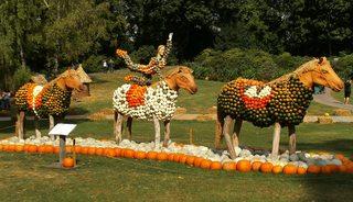 Kürbisdekoration #11 - Kürbis, Kürbisdekoration, Zirkus, Pferde, Akrobatik, Balance