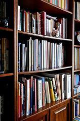 Bücherregal Ausschnitt - Regal, Möbel, Bücherregal, Bücher, Buch, Buchdarstellung, stehen, lesen, Bücherei, Bibliothek, Einband, Bucheinband, Schule, Leseförderung, Illustration, Literatur, Wissen, Wissenserwerb, Schriften, Schrift, Druck, geschrieben, Schreibanlass, Lesestoff, Bücherschrank, Schrank, aufbewahren, Aufbewahrung, sortieren