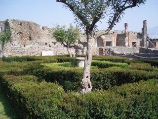 Pompeji - Vegetation - Italien, Pompeji, Antike, Vesuv, alt, Vegetation