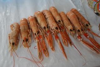 Fischmarkt Garnelen - Krabben, Krebse, Gliedertiere, Fischmarkt, Auslage, Krebstiere, Gliederfüßer