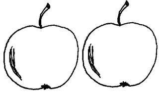 Apfel Menge 2 - Apfel, Mengenbild, zwei, Anlaut A