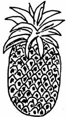 Ananas - Ananas, Frucht, Anlaut A, Obst
