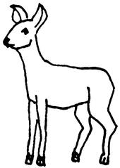 Reh (2) - Reh, Wild, Bambi, Anlaut R, Wörter mit h