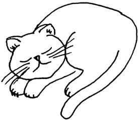schlafende Katze - Katze, Kätzchen, schlafen, Anlaut K, Illustration