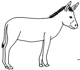 Esel - Esel, Bremer Stadtmusikanten, Lasttier, Haustier, Anlaut E