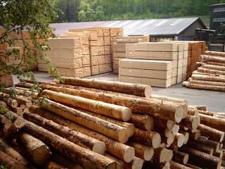 Stämme und Bretter - Holz, Wald, Stamm, Brett, Sägerei, Arbeit, Produktion, Sägewerk, entrinden, Stapel, Bloch