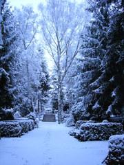 Schneelandschaft - Schnee, Schneefall, Winter, Friedhof, Jahreszeit, Kälte, Ruhe, Frieden, Bäume, Wege, Meditation, Fußspuren, Spuren