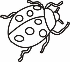 Marienkäfer - Käfer, krabbeln, Insekt, Anlaut M, Glück, Glücksbringer, Silvester, Neujahr, Punkte