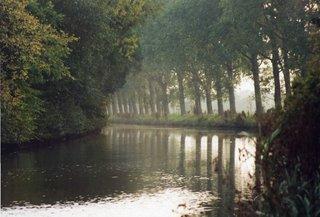 Kanal, Wasserstraße - Wasserweg, Wasserstraße, Entwässerung, Pappeln, Gegenlicht, Spiegelung