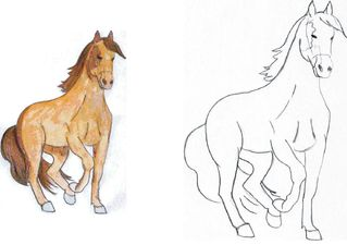 Pferd 2 - Pferd, reiten, Fortbewegung, Haustier, Hoftier, Bauer, Nutztier
