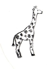 Giraffe - Afrika, Zoo, Giraffe, Anlaut G