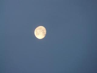 Mond - Mond, Morgen, Nacht, Himmel, Dämmerung, Himmelskörper, leuchten, Mondphase