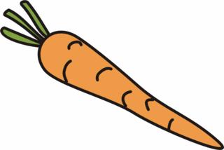 Karotte - Karotte, orange, Möhre, Mohrrübe, gelbe Rübe, Anlaut K