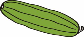 Zuchini - Zucchini - Zuchini, Gemüse, grün, Anlaut Z, Zucchini