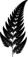 Farn-Fraktal - Mathematik, Iteration, Rekursion, Fraktal