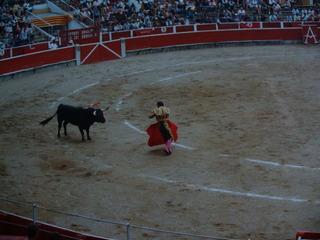 Stierkampf - Girona, Coasta Brava, Spanien, Arena, Stierkampf, Volkssport