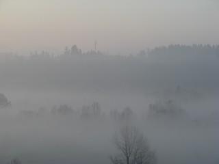Nebel - Nebel, Meteorologie, Wetter, Wettererscheinung, Wassertröpfchen, Kondensation, Taupunkt, Wasserdampf