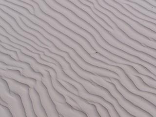 Sandrippeln - Sand, Wind, Wehe, Nordsee, Struktur, Rippeln, Strand, verwehen