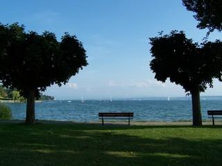 Bodenseestille - Bodensee, Bank, Wasser, See, Ufer, Stille, Wasser, Segelboote, Ruhe, Schatten, Bäume, Meditation
