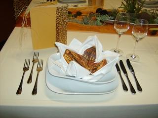 Tischdekoration *Afrika* #1 - Platzteller, Serviette, Besteck, Messer, Gabel, Weinglas, Tischdecke, festlich, Menükarte