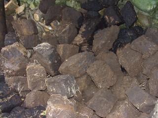 Torf - Torf, Soden, stechen, Moor, heizen, Kohlenstoff, Kohle, Inkohlung, Inkohlungsprozess, organisch, Torfstich, Chemie