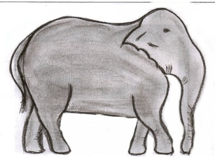 Elefant - Elefant, Afrika, Dickhäuter, schwer, Rüssel, grau, stark, Anlaut E