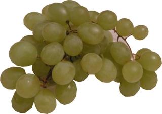 Trauben - Obst, Traube, Früchte, Frucht, Weintrauben