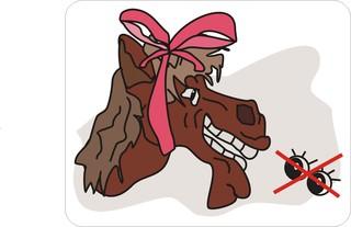 Sprichwörter - bildlich dargestellt - Redewendung, Sprichwort, Umgangssprache, Gaul, Geschenk, geschenkt, Maul, gucken, bildhaft