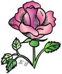Rose - Pflanze, Blume, Rose, rosa, Anlaut R, Illustration